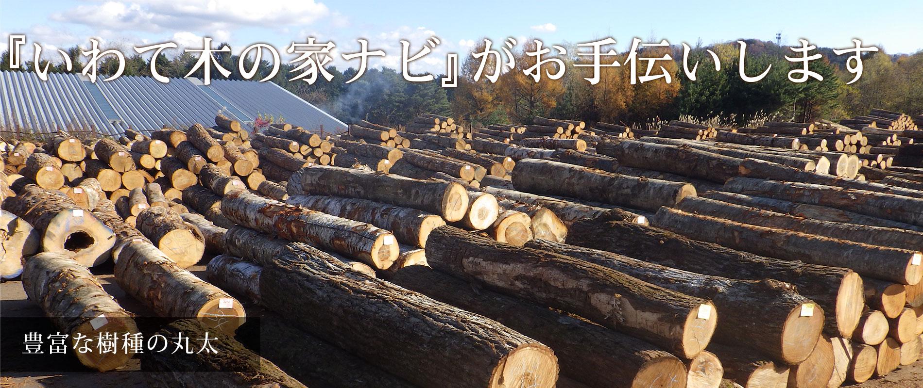 豊富な樹種の丸太